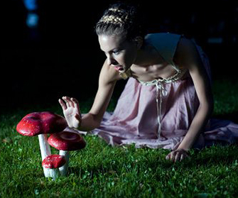 Приметы о грибах