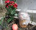Те, кто ходят на Пасху на кладбище вместо храма, не христиане, заявляют в Русской Церкви