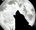 Современные сказки о Луне