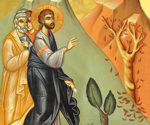 Бесплодная смоковница. О суеверной религиозности, её проявлениях в церковной жизни, а также о необходимости и возможности её преодоления — протоиерей Сергий Стольников