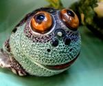Как не быть удушенным «денежной жабой»